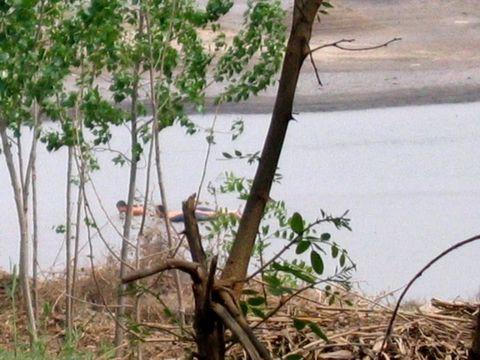 原创 待开发的农村湿地 (兰州园丁摄) - 兰州园丁ljm44713 - 我的博客原创照片,欢迎指导
