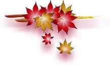 引用 【素材】背景素材—秋叶系列 - 百合 - 百合港的博客