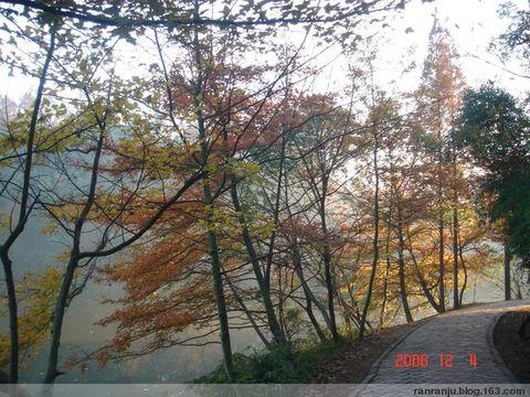 那山,那水,那叶(原创) - 木头格子 - 下营街三十八号