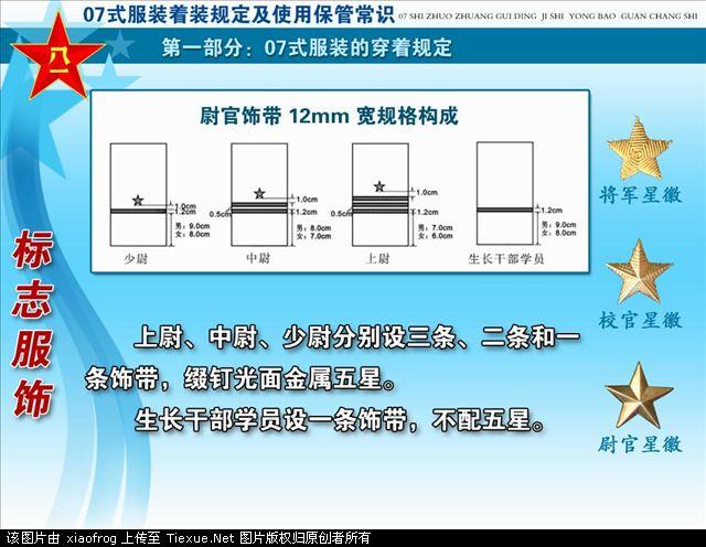 解放军07式新军装级别资历章图片