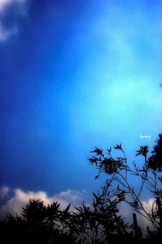 仰望天空的幸福