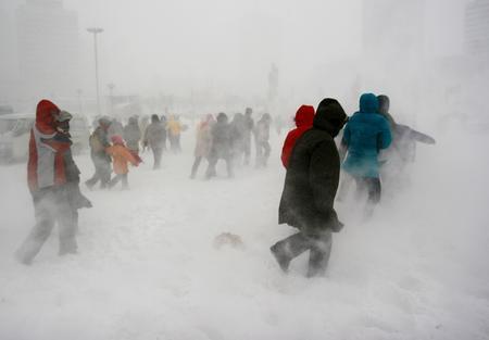 视频分享,谁的冬天将会更加寒冷? - 苗得雨 - 苗得雨:网事争锋