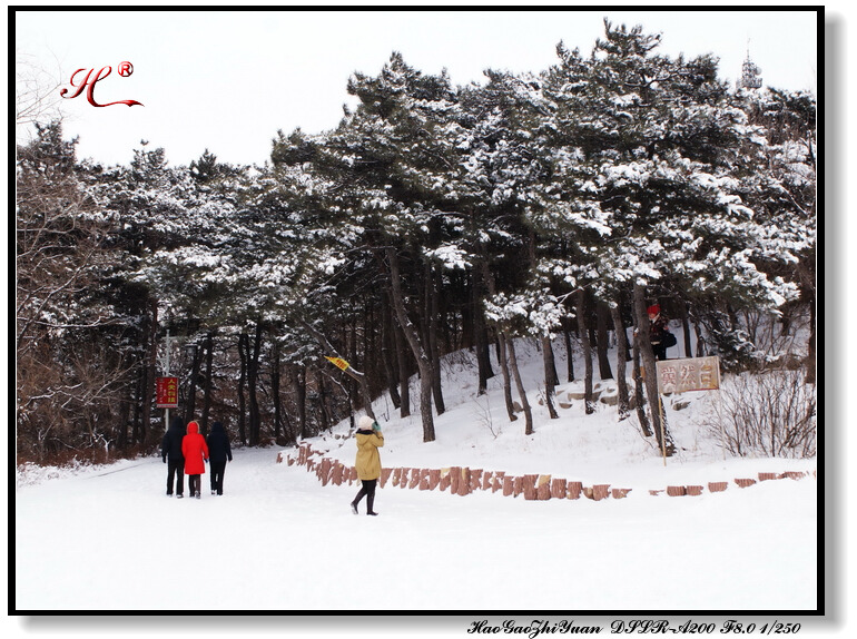 雪中即景 - 浩高致远 -      浩高致远欢迎您光临