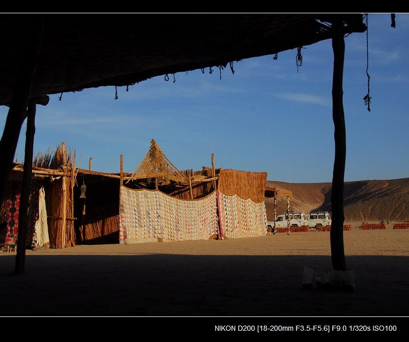 沙漠探秘貝多因人 - 西樱 - 走马观景