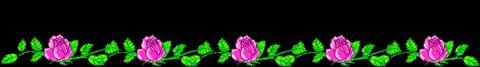 美丽的花分隔线 - 敏儿 - 敏儿的空间