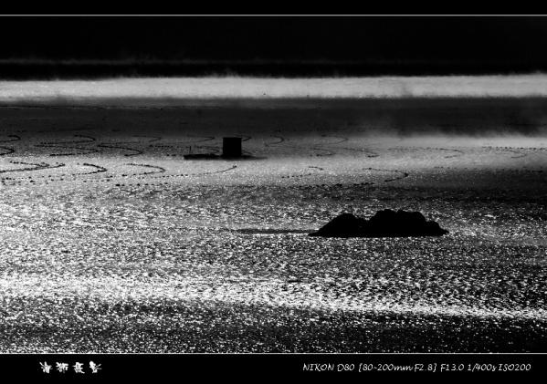 [原创]  灰色 - 海狮 - 大连海狮的博客