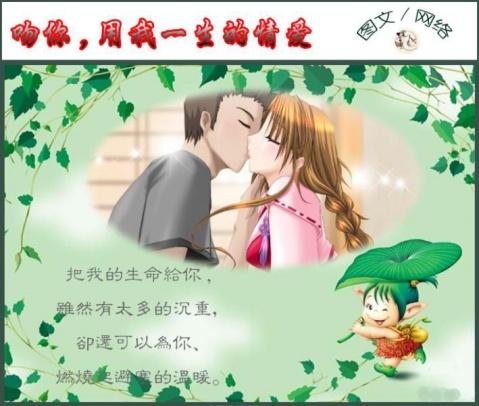 吻你,用我一生的情爱 - 白玫瑰 -