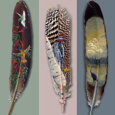 令人惊叹的羽毛画! - 非著名艺术家 - 非著名艺术家的博客