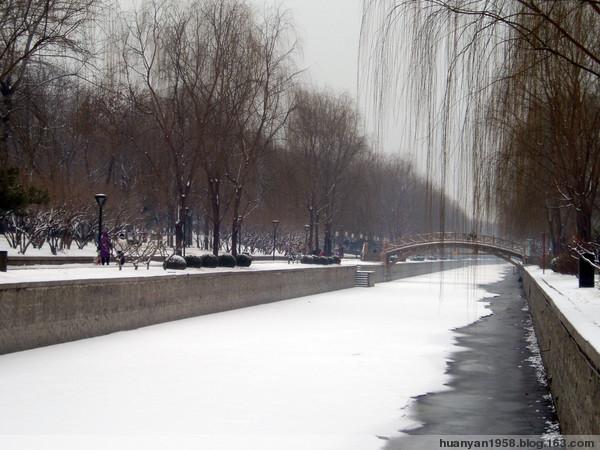 瑞雪兆丰年 - 欢颜 - 春天在向我们走来