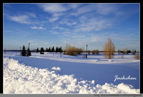 美妙的雪景(组图) - 冬子 - 冬子的小屋----博客