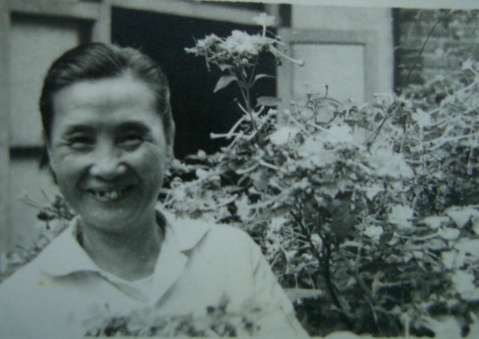 (原创)想念母亲 - 成都装饰jj - 成都市建筑装饰协会86643697