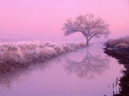 【转载】美丽的田园风光「组图」 - 蓝天 - 走在蓝天下的博客