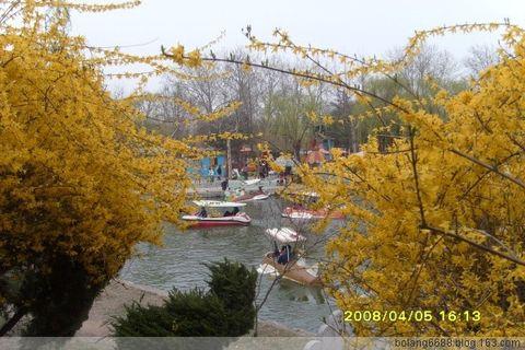 春之海曲——日照海曲公园掠影(原) - 微风 - 微风