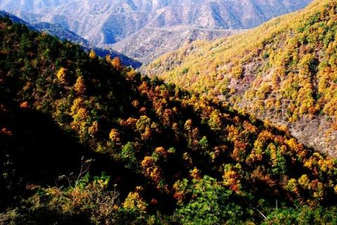 山里的秋天 - 一掬茗香 - 一掬茗香的博客