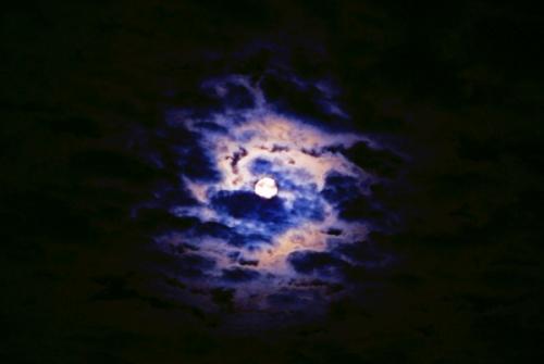此时此刻的月亮 - 夏笳 - 夏天的茄子园