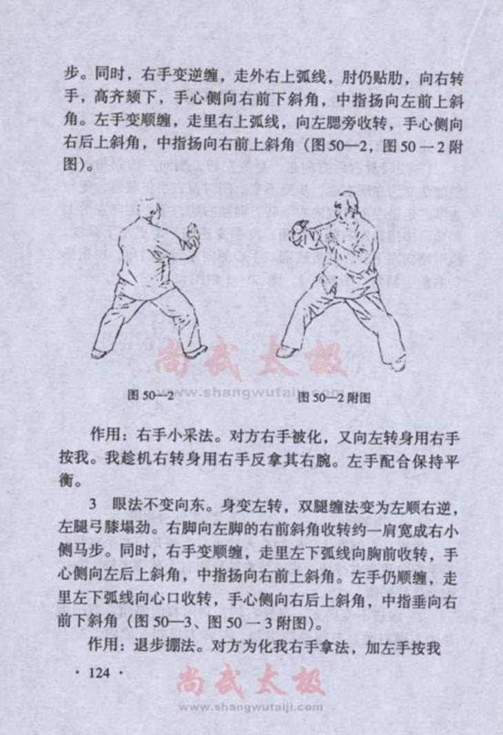 引用 陈式太极拳实用拳法 四十七式野马分鬃至五十四式单鞭 - 蓝色小溪 - 蓝色小溪