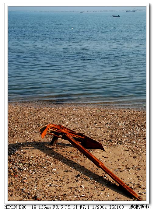 [原创]端午海边寻拍 - 海狮 - 海狮de视觉空间