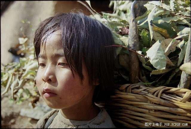 央视都不敢公布的照片...(你有勇气看完吗?) - yidihaishuidejia - 当泪划过脸颊的时候 一切都不再重要了..