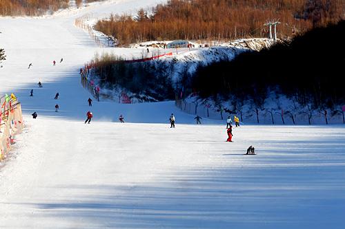 快来崇礼滑雪吧~ - 无摄无味--凉啤酒 - 凉啤酒的博客