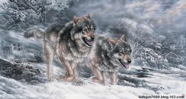 狼爱上羊 与狼共舞(音画图文) - 与狼共舞 - 强者生存  与狼共舞