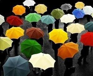 春雨润心 - 感恩的心 - 感恩的心