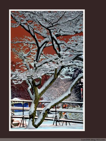 个人作品展之二 - kumi366 - kumi366的博客