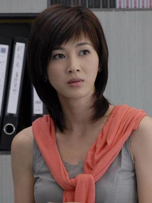 2008年独霸荧屏的十大电视剧女演员组图