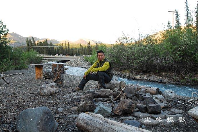 阿拉斯加迪纳利公园的野生动物 - Y哥。尘缘 - 心的漂泊