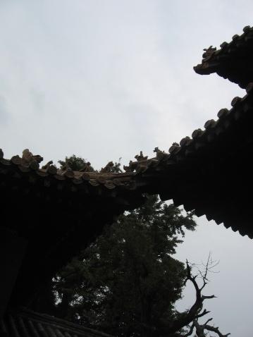 东方圣城曲阜游记 - JaK - 古#安宅 HomeForever