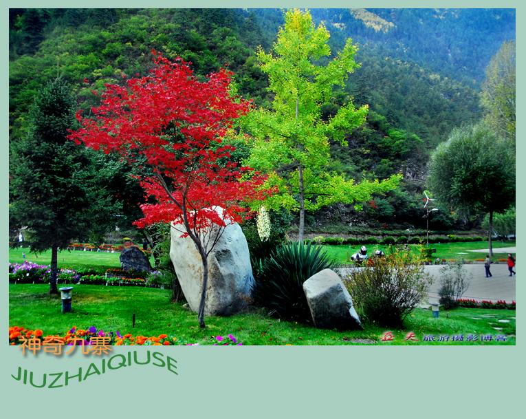 (原摄)九寨秋色之十三 - 高山长风 - 亚夫旅游摄影博客