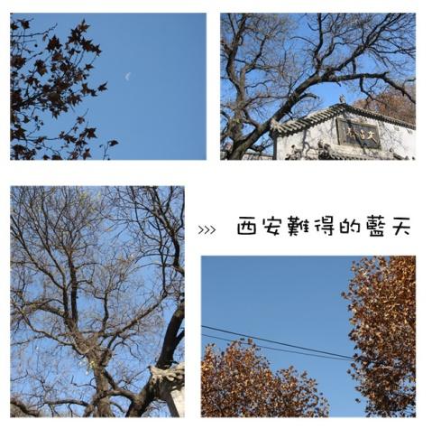 西安行照片发布之二 - 馨香盈袖 - 記 日