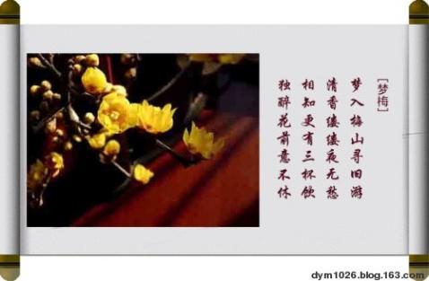 音画欣赏-梅花(二) 素材/dym1026 编制/雪劲松 - 雪劲松 - 雪劲松的博客