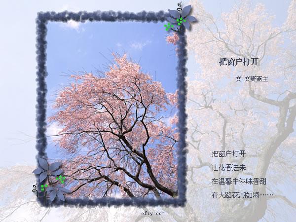 精美圖文欣賞79  - 唐老鴨(kenltx) - 唐老鴨(kenltx)的博客