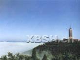 射洪   诗书画之乡 - jbwx2008 - 唯愿现世安稳,岁月静好