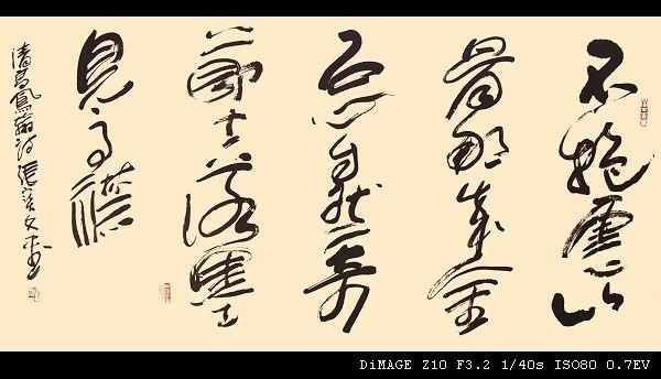 挥洒心情 - 一束阳光 - 半石斋-张宝文