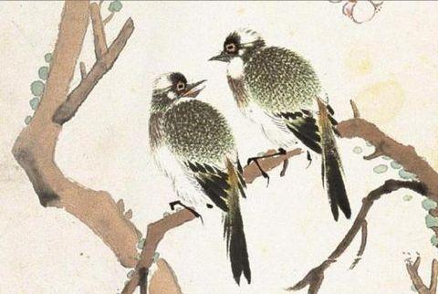 (古今名家笔下各种鸟禽汇编) - 沧海一笑 - xxl2217246的博客