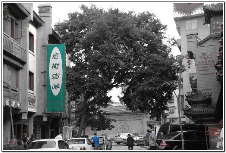 (原创)西安行-德福巷和杯子 - 鱼笑九天 - 鱼笑九天