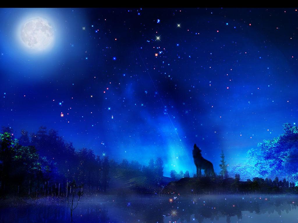 今晚的绝唱 - nnhhs10 - 流星划过夜空