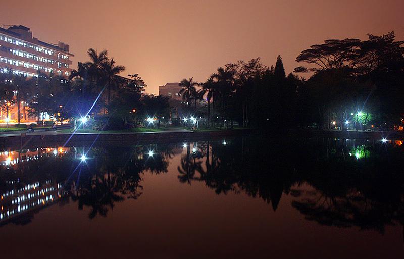 【原创】池塘夜色 - 歪树 - 歪树