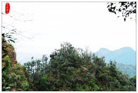 美丽的三百山 - 宽石居士 - 宽石居士的摄影博客
