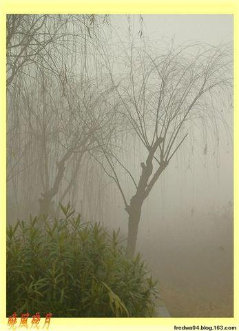 霧鎖淮安 - 曉風殘月 - 曉風殘月