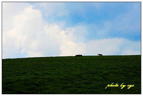 [原创]神州山水(19)汉唐军马仍行空《钗头凤》 - 自由诗 - 人文历史自然 诗词曲赋杂谈