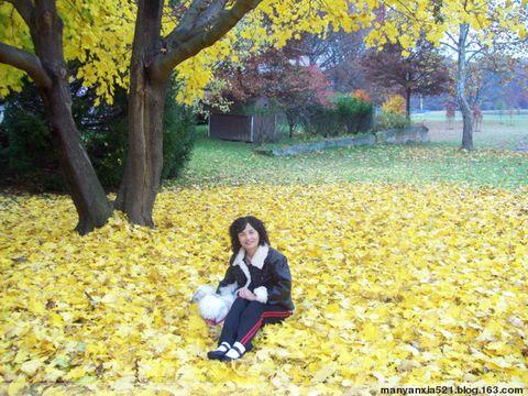 我的赴美日记[43]美丽的心情[原创] - 叶红 - 给自己一个理由,让自己活得更精彩
