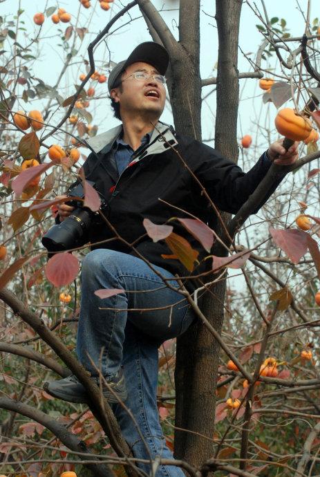 再去河北满城柿子沟 - 刘兵 - 刘兵的博客