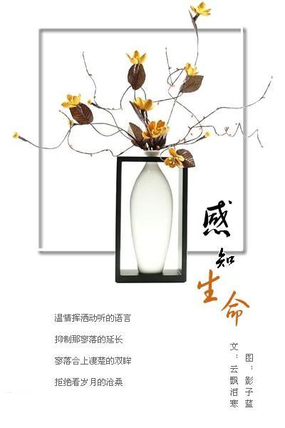 感知生命(精美图文欣赏) - 梦幻星雨 - 陇原幽谷★梦幻小屋