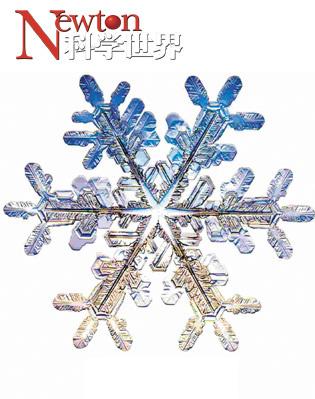 雪花:冬之精灵 - kxsj - Newton-科学世界