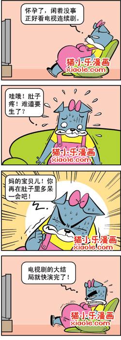 猫3狗4—女人看电视 (转) - 沫儿 - 零点式、旋转  .废墟