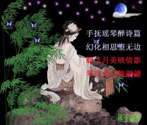 柔情的夜晚3 - 林子 - .
