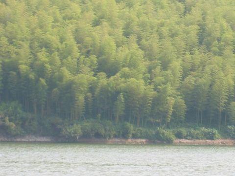 溧阳天目湖游记(原创 超多照片) - 轻舞飞扬 - 轻舞飞扬 ^_^ 的世界