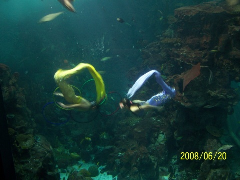 广州动物园和海洋馆